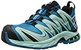 Salomon Damen XA Pro 3D Gtx Traillaufschuhe, Blau (Fog Blue/Igloo Blue/Tonic Green), 39 1/3 EU