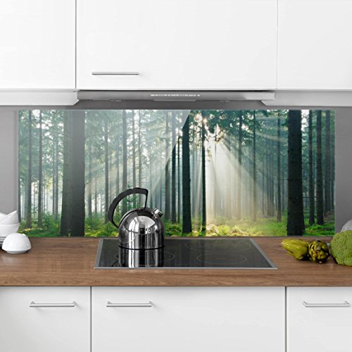 Bilderwelten Paraschizzi in vetro – Enlightened Forest – Panoramico ...