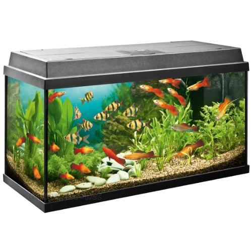 Juwel Aquarium Rekord 800