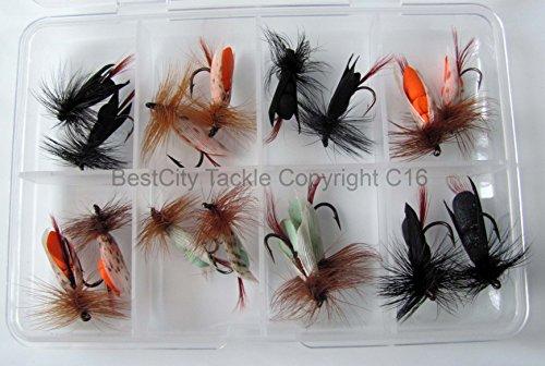 FLy Fishing Winged #306 - Esche galleggianti in schiuma, 16 mosche da pesca per carpa, trota, luccio