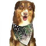 RAHJK Bandana para Perro, Pañuelos para Perro, Reversibles, Ajustables, Triangulares, Bufandas para Mascotas y Gatos Coníferas Conos De Pino