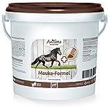 AniForte Mauke Formel 1 kg für Pferde - Hautpflege & Hufpflege, Unterstützung des Stoffwechsel & Immunsystem, Pferdepflege für vitale Haut & Wohlbefinden