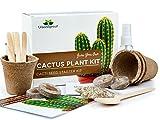 Kit Especial para el Cultivo de Cactus