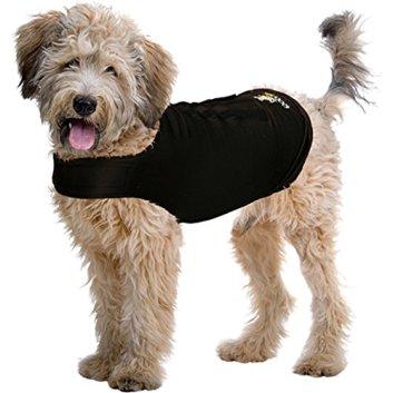 Risultati immagini per cani magliette a compressione