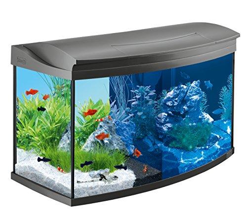 Tetra AquaArt Evolution Line LED Aquarium 100liter