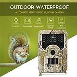QLPP Trailkamera, 12MP 1080P HD Wildlife-Kamera mit 120 ° Weitwinkel, 100 Grad PIR-Erfassungswinkel, 49 Stück IR-LEDs Nachtversion für Wildlife Monitoring