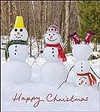 Caridad tarjetas de Navidad (wdm7857)–Frosty Fun–3muñecos de nieve–Pack de 5cartas–se vende en ayuda de Marie Curie
