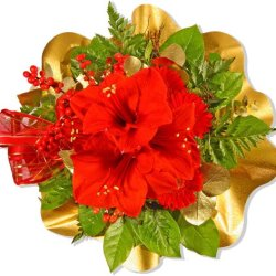 """floristikvergleich.de Blumenstrauß Blumenversand Weihnachten """"Weihnachtstraum"""" +Gratis Grußkarte+Wunschtermin+Frischhaltemittel+Geschenkverpackung"""