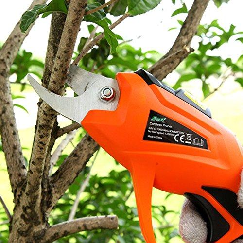 HomeYoo Profesional eléctrica jardín Tijeras, Recargable – Tijeras de Ciruela Uvas Olivo Árboles eléctrico Chapa Tijeras para árbol Sierra, Bonsai, Jardín, árboles, Flores (Naranja)