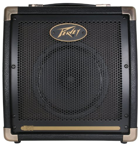 Peavey Ecoustic E20 Acoustic Guitar Amplifier
