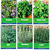 HERB COLLECTION 4- selection of 6 Fresh Herb Seeds Oregano, Coriander, Sweet Basil, Mint, Rosemary & Thyme