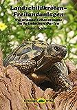 Landschildkröten-Freilandanlagen: Naturnahe Lebensräume im heimischen Garten