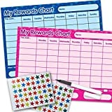 2 x Re-usable Reward Chart, (including FREE Star Stickers and Pen) - Blue & Pink