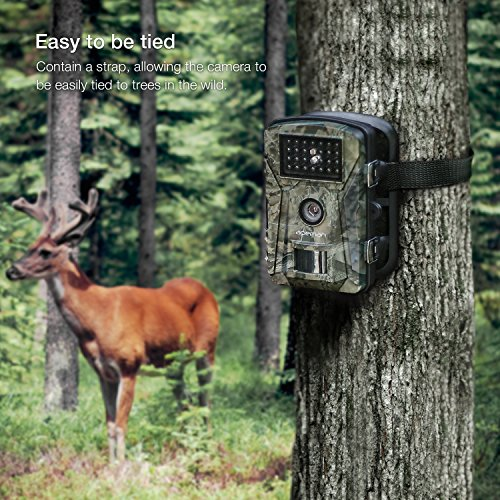 The APEMAN 12MP 1080P Trail Wildlife Camera Trap produces high-quality images and high-resolution video. Working with a 12MP camera, you can expect to capture crisp coloured images during the day and clear black /white images at night.