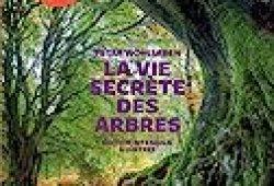 La Vie secrète des arbres – Edition illustrée