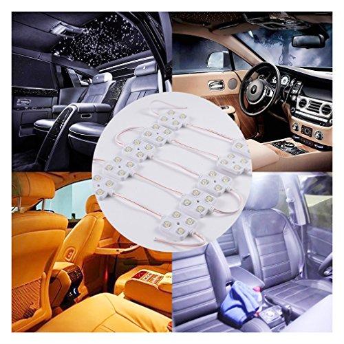 40 Lampada LED per Auto/ Esterno Camper/ Camion Luce Bianca per Lettura/Soffitto/Plafoniere/Interno...
