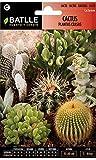 Semillas De Cactus Y Plantas Crasas Variadas Para Tu Jardín