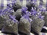 10 x Lavendelsäckchen mit echtem französischen Lavendel - Insgesamt 100g Lavendelblüten als Duftsäckchen