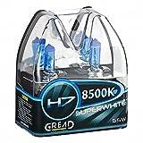 Gread H7 Box Halogen Lampen in Xenon Optik Lights   Super White   8500k 55W   E-Prüfzeichen   100% Passgenauigkeit & Lange Lebensdauer