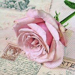 floristikvergleich.de 20 Servietten Postcard rose ? Herzliche Postkarte / Liebe / Rosenblüte 33x33cm