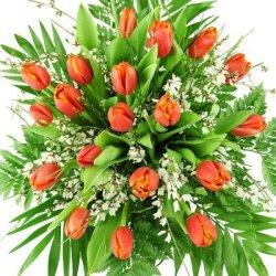 floristikvergleich.de Rote Tulpen – Frühlingsblumen – Blumenstrauß Tulpenmärchen
