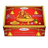 Vedic Vaani Ganpati Puja Kit (Multicolour)