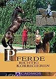 Pferde richtig korrigieren: Schwierigkeiten in der Pferdeausbildung erfolgreich lösen (Cadmos Pferdebuch)