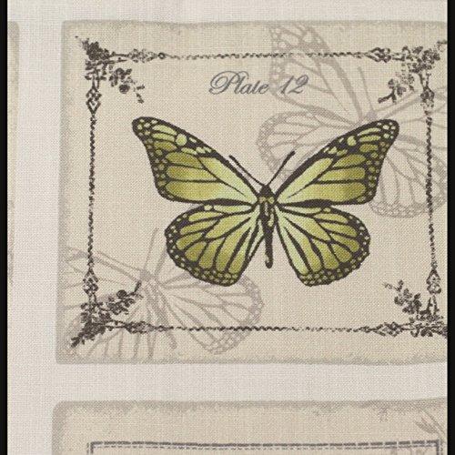 """Just Contempo - Funda de cojín, diseño vintage de mariposas, color verde/crema,17 x 17"""""""