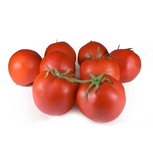 GuCra 野菜模型 トマト とまと 真っ赤な完熟トマト 8個パック 食品サンプル