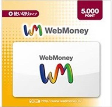 WebMoney ウェブマネー カード 5000 POINT