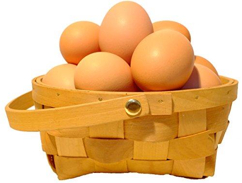 農家直送!たまご 北海道発、平飼いで育てた純国産鶏の有精卵 36個+割れ保証4個(1個あたり42円)