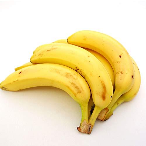有機【バナナ2k】燻蒸処理をしていない安全なオーガニックバナナ2kg