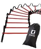 LICLI ラダー トレーニング 野球 サッカー 5m 7m 9m プレート 9枚 13枚 21枚 収納袋付き 3カラー 「 連結可能 スピードラダー 」「 瞬発力 敏捷性 アップ 」「 フットサル テニス 練習 」 トレーニングラダー ladder (レッド, 5m)