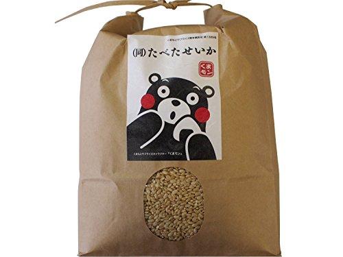 29年 九州産 熊本産 発芽玄米 無農薬 3kg