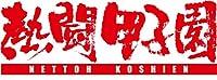 熱闘甲子園2018 ~第100回記念大会 55試合完全収録~[DVD]