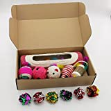 Pawsfun猫おもちゃ12点セット 噛むおもちゃ かわいい 猫用おもちゃ 丈夫 ストレス解消 運動不足解消 お誕生日 バースデー プレゼント
