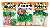 日本農産種苗 種(野菜) スプラウト(かいわれ)セット 901231 室内で手軽に栽培 3入