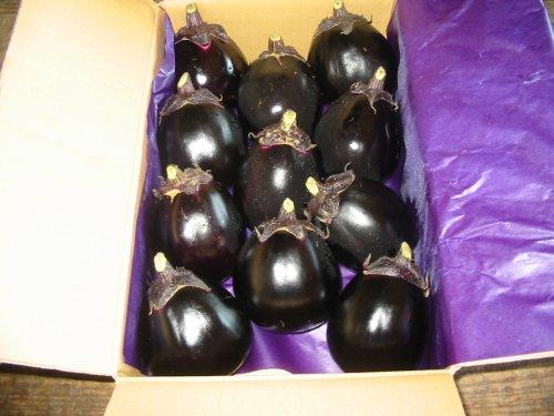 奈良県産 丸なす 8~11本入り 約2kg詰め 茄子 ナス