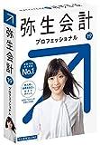 弥生会計 19 プロフェッショナル【最新】 |新元号・消費税法改正対応| パッケージ版