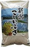 新潟県胎内市産 白米 減農薬無化学肥料栽培こしいぶき 10kg 29年産