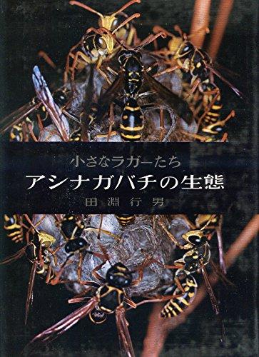 アシナガバチの生態―小さなラガーたち (1962年)