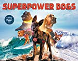 Superpower Dogs (Little Brown Young Readers Us)