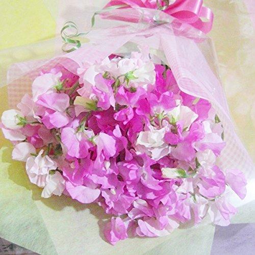 スイートピーは母の日に喜ばれる花束ランキング4位