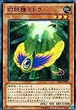 遊戯王 LVAL-JP035-N 《幻妖種ミトラ》 Normal