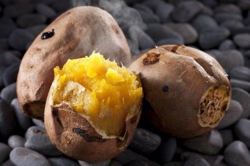 石焼き芋の石 お徳用 (無着色/無害)石のさかい (10 キログラム)