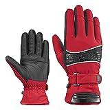 ROCKBROS(ロックブロス)スキー手袋 防寒 防風 アウトドアグローブ 冬用スポーツ手袋 自転車 バイク(レッドL)