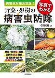 梨の裂果と生理落果の原因は日照不足!?その対策を解説 27