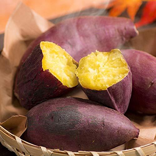 安納芋 さつまいも サイズ無選別 家庭用 5kg 鹿児島県産