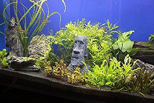 J&M tools 水槽 アクアリウム 用 オブジェ 熱帯魚 金魚 爬虫類 等の 隠れ家 景観 置物 装飾 オーナメント に (a.モアイ 小)