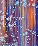 Bernard Frize (Contemporary Painters)